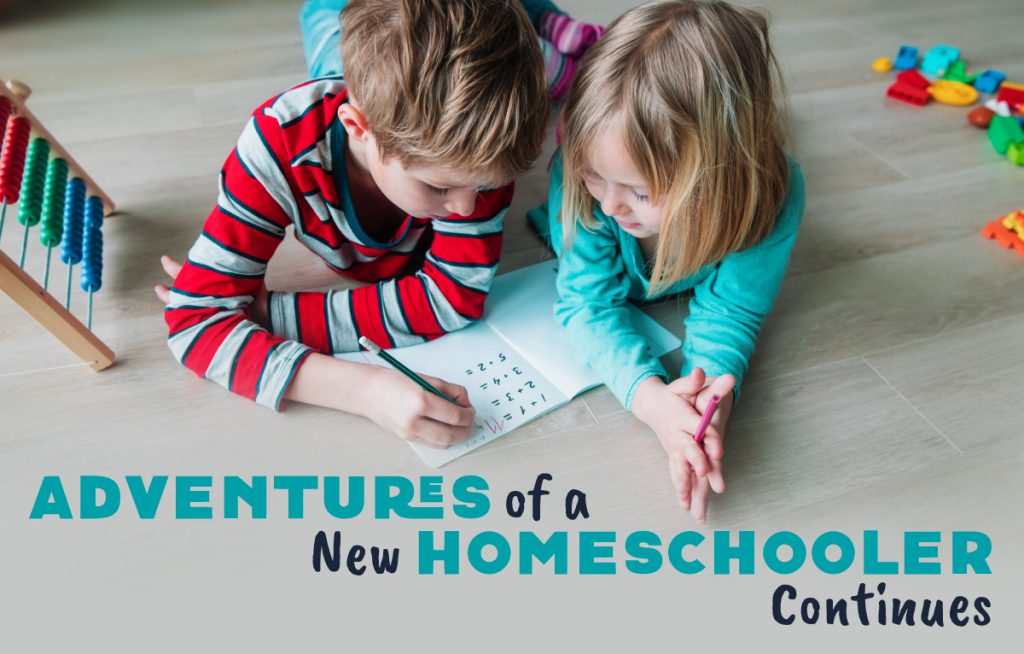 Adventures of a New Homeschooler Continues