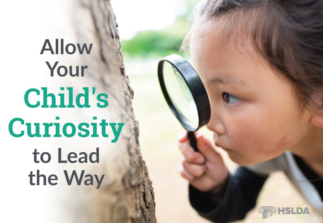 Allow Your Child's Curiosity to Lead the Way